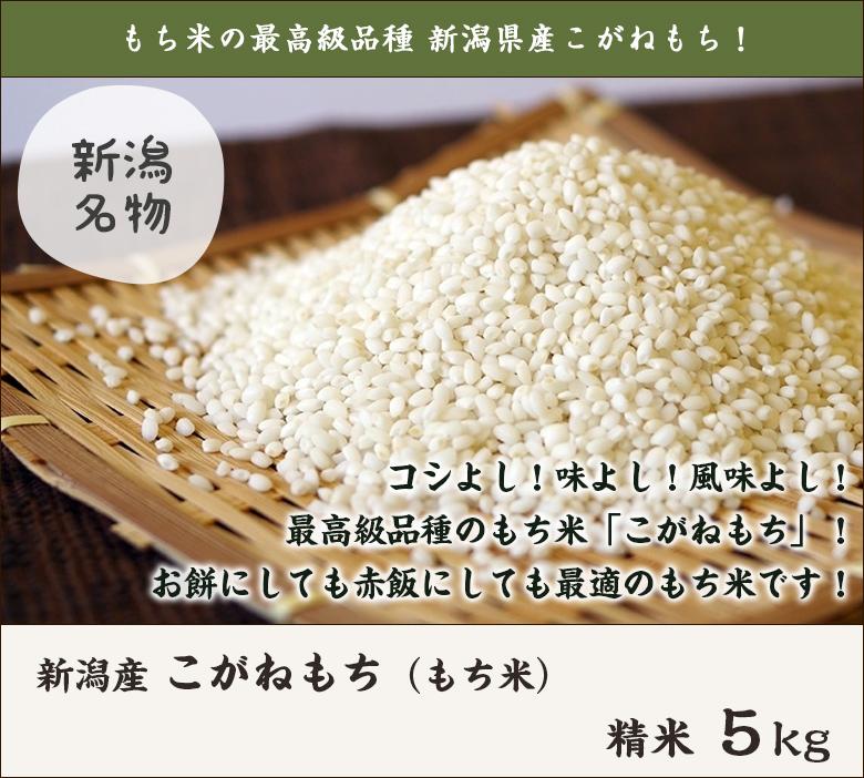 徳永農園のもち米・コガネモチ(特別栽培)