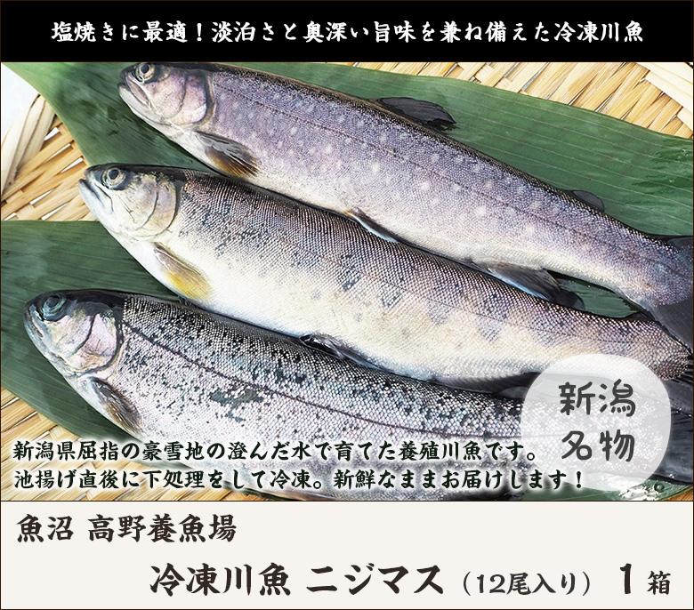 高野養魚場ニジマス