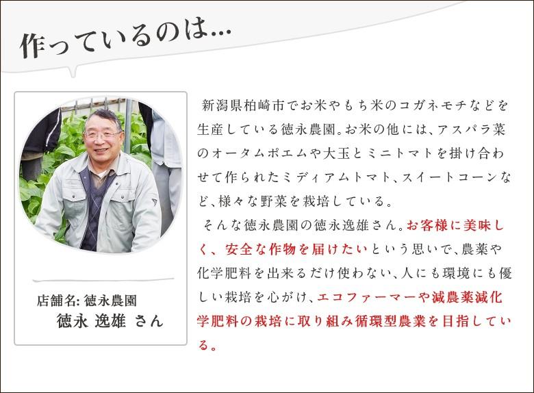 徳永農園生産者紹介