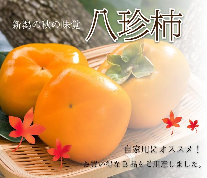 秋の味覚、八珍柿