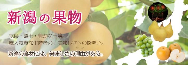 新潟の果物
