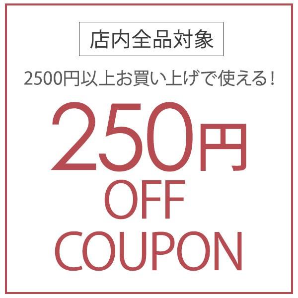 店内全品対象!2500円以上購入で250円オフクーポン