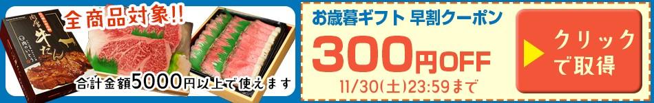 早割クーポン300円OFF