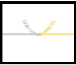 結び切り/仏のし 黄水引