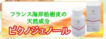 お肌の潤いをサポート! リプロール 機能性表示食品