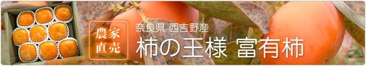 農家直売 奈良県西吉野産 柿の王様富有柿
