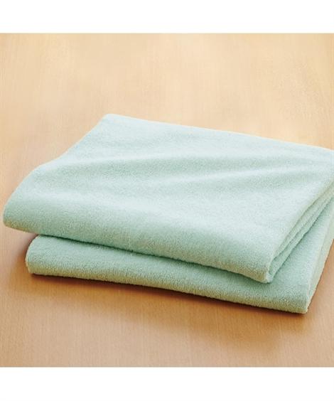 タオル 乾きやすいデイリーカラー超薄手大判バスタオル同色2枚組 ニッセン nissen(B・ブルー)