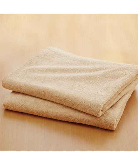 タオル 乾きやすいデイリーカラー超薄手大判バスタオル同色2枚組 ニッセン nissen(H・ベージュ)