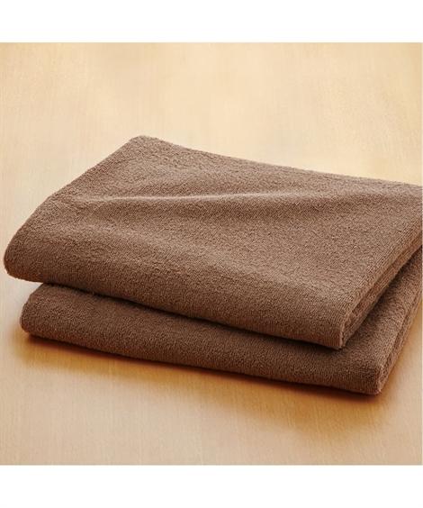 タオル 乾きやすいデイリーカラー超薄手大判バスタオル同色2枚組 ニッセン nissen(J・ブラウン)
