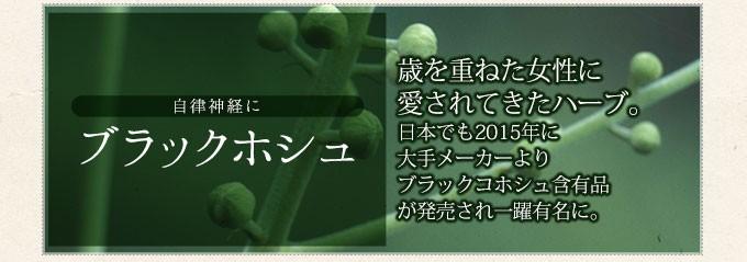 自律神経にブラックコホシュ 利を重ねた女性に愛されてきたハーブ 日本でも2015年に大手メーカーよりブラックコホシュ含有品が発売され一躍有名に。