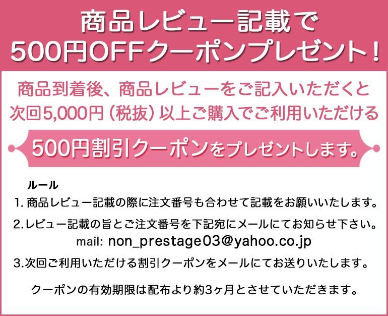 レビュー書いて500円OFF