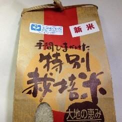 特別栽培米 コシヒカリ 5kg