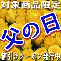 【早割】父の日クーポン!対象品番お買い上げで200円引き!
