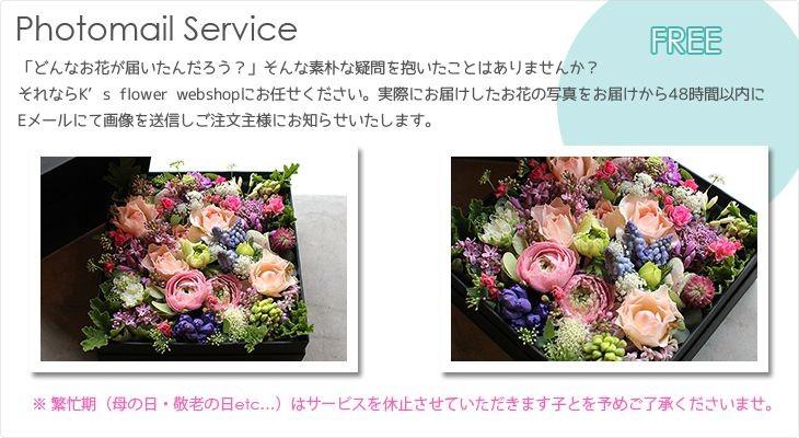 Photomail Service | フォトメールサービス