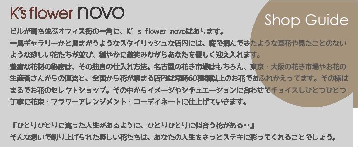 K's flower novo | ケイズフラワー・ノーヴォ