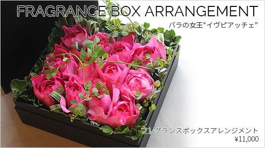 Fragrance Dozen Roses Box Arrangement | フレグランス・ダーズンローズ・ボックスアレンジメント