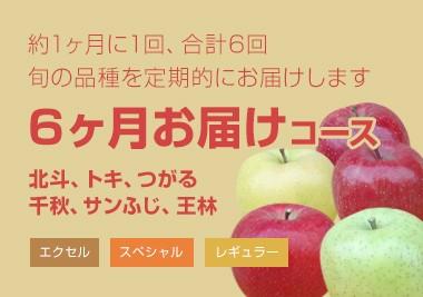 成田りんご園 6ヶ月お届けコース