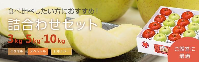 成田りんご園 詰め合わせセット