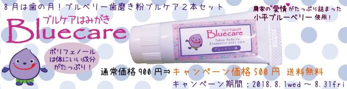 歯磨き粉/ブルーベリー/キャンペーン0