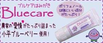 ポリフェノール/虫歯予防/口臭予防/口腔環境/ブルーベリー