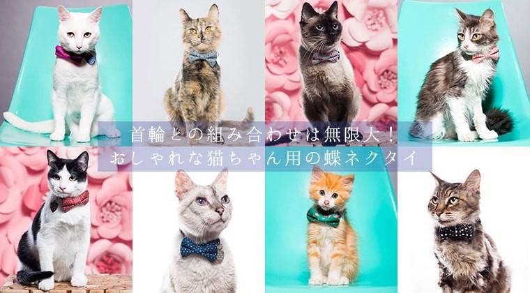 猫の蝶ネクタイ・コサージュ