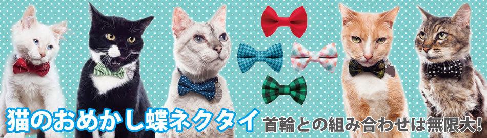 猫の蝶ネクタイ