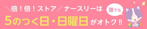 """""""5のつく日"""""""