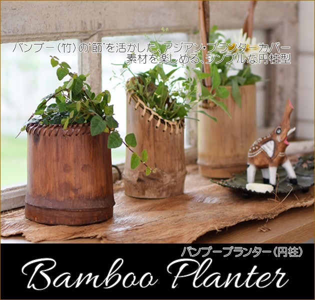 竹プランター(円柱)