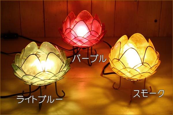 パープル、スモーク、ライトブルー点灯