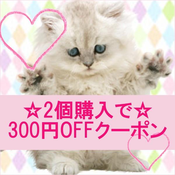 【にゃんこの生活】猫用の人気フード 2個で300円OFF
