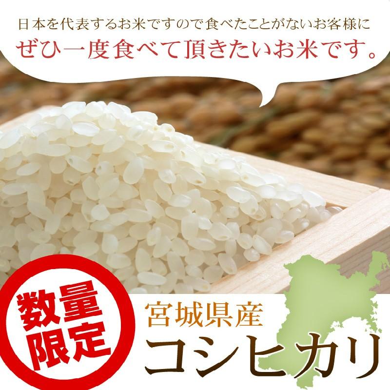 特別栽培米 宮城県産コシヒカリ