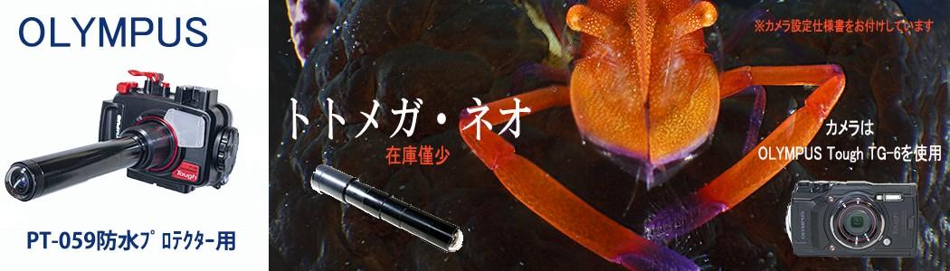 ミラーレスで本格な水中虫の目撮影