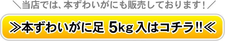 本ずわい蟹足5キロはコチラ