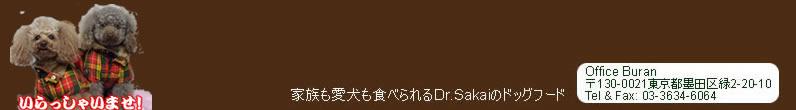 Dr.Sakai