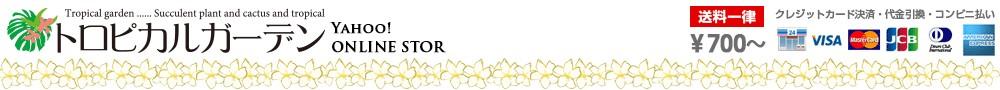 プルメリア&多肉植物 トロピカルガーデン