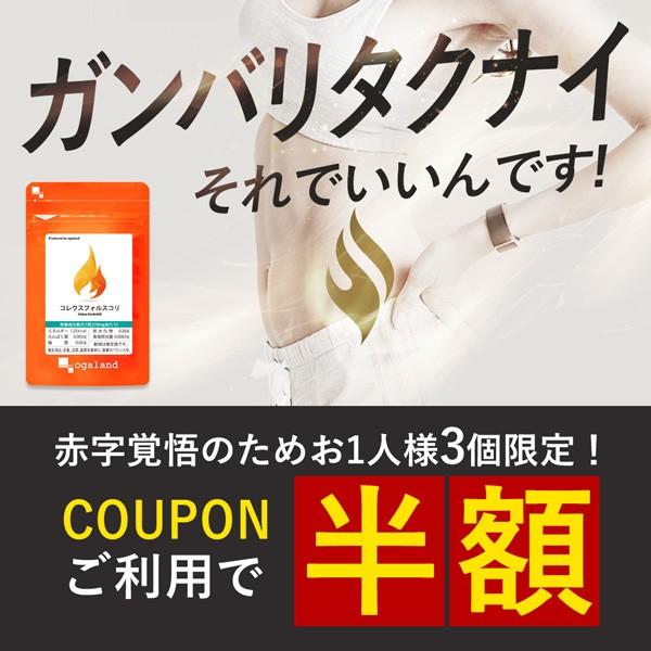 【今月最後の復活!】コレウスフォルスコリが50%OFF!!
