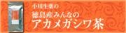 徳島産みんなのアカメガシワ茶