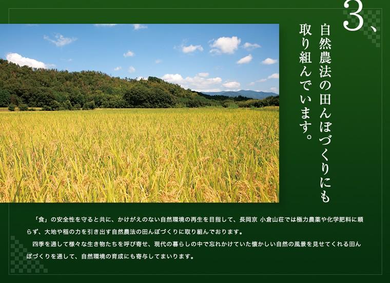 自然農法の田んぼづくりにも取り組んでいます。