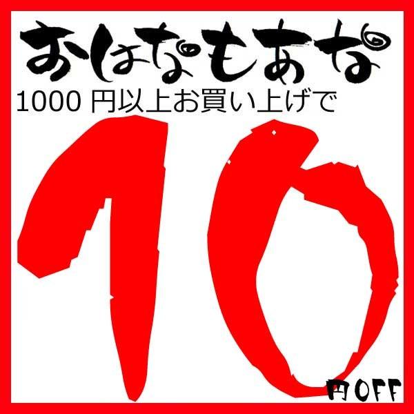 1000円以上お買い上げで使えるクーポン!!