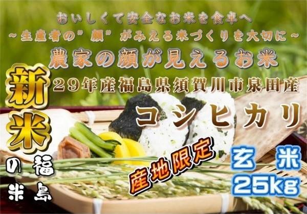 泉田コシ玄米25kg