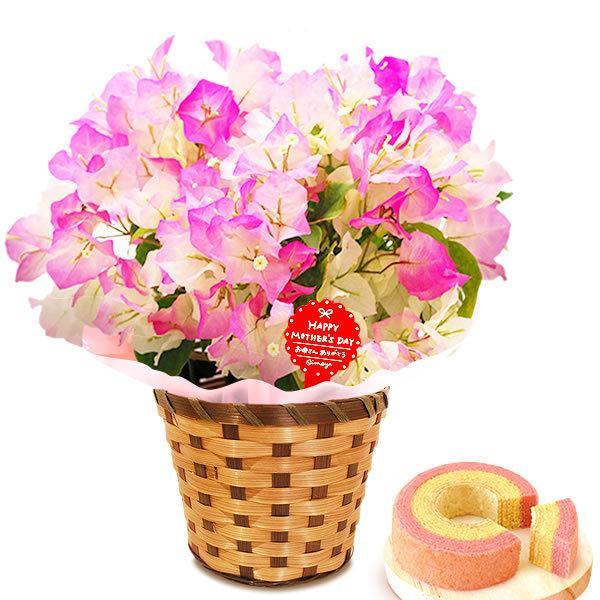 母の日 花 ギフト 母の日プレゼント 2019 mothersday 鉢植え スイーツ カーネーション以外|oimoya|13