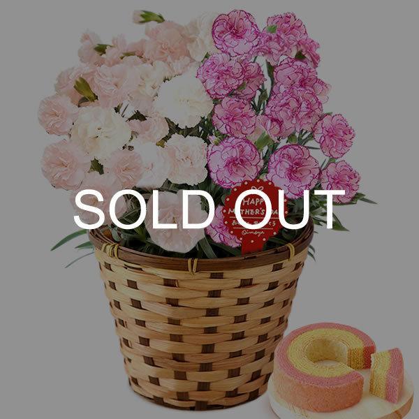 母の日 ギフト 花 母の日 プレゼント カーネーション 鉢植え 花鉢 花とスイーツ 2020 ギフトランキング お菓子|oimoya|28
