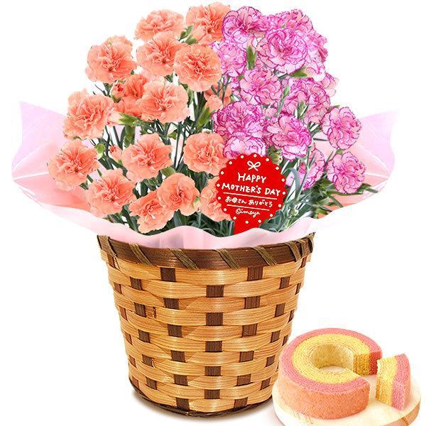 母の日 ギフト 花 母の日 プレゼント カーネーション 鉢植え 花鉢 花とスイーツ 2020 ギフトランキング お菓子|oimoya|27