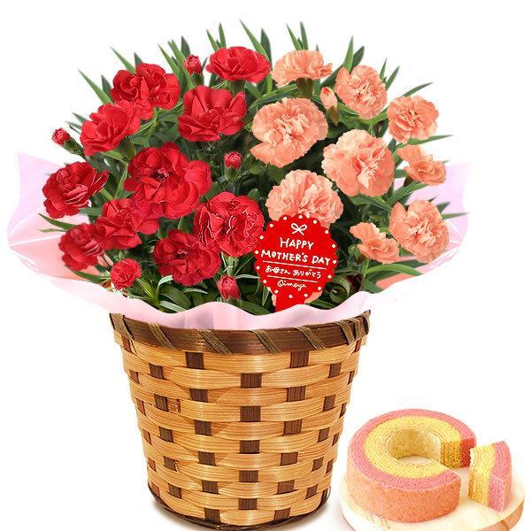 母の日 ギフト 花 母の日 プレゼント カーネーション 鉢植え 花鉢 花とスイーツ 2020 ギフトランキング お菓子|oimoya|26