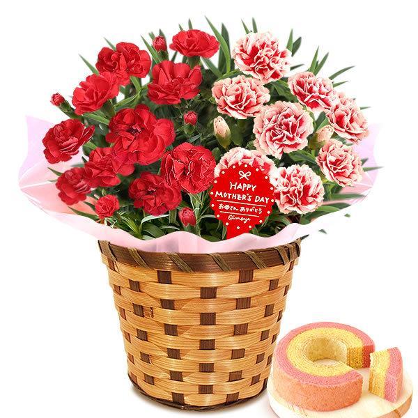 母の日 ギフト 花 母の日 プレゼント カーネーション 鉢植え 花鉢 花とスイーツ 2020 ギフトランキング お菓子|oimoya|22