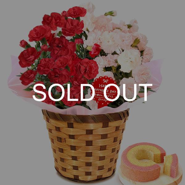 母の日 ギフト 花 母の日 プレゼント カーネーション 鉢植え 花鉢 花とスイーツ 2020 ギフトランキング お菓子|oimoya|25