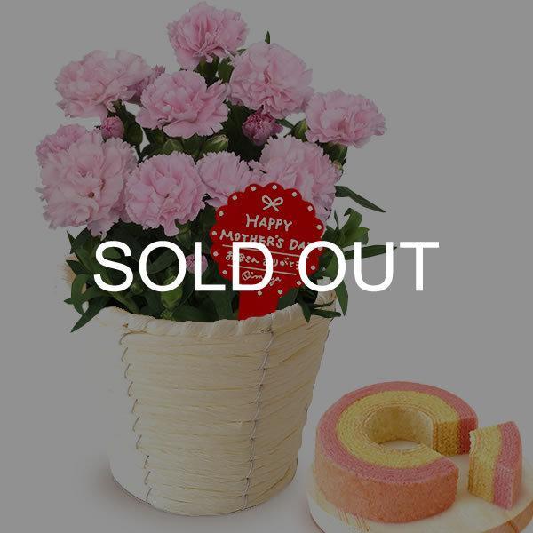 母の日 花 ギフト 母の日プレゼント 2019 ランキング mothersday 鉢植え スイーツ カーネーション以外|oimoya|15