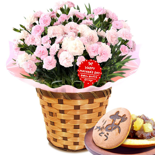 母の日 ギフト 花 母の日 プレゼント カーネーション 鉢植え 花鉢 お菓子 スイーツ 2020 ギフトランキング 5号鉢 oimoya 37