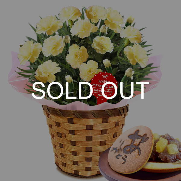 母の日 ギフト 花 母の日 プレゼント カーネーション 鉢植え 花鉢 お菓子 スイーツ 2020 ギフトランキング 5号鉢 oimoya 36