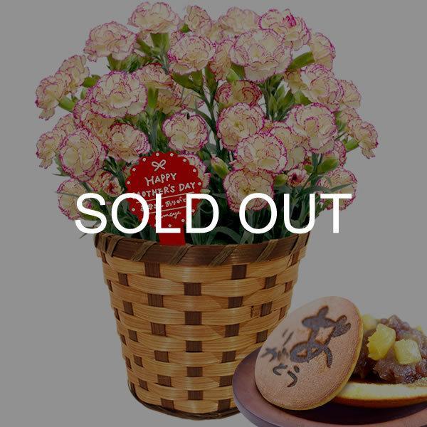 母の日 ギフト 花 母の日 プレゼント カーネーション 鉢植え 花鉢 お菓子 スイーツ 2020 ギフトランキング 5号鉢 oimoya 31